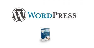 Wordpress_dolibarr